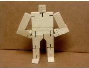 Robocub