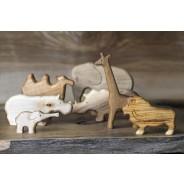 Set animale exotice din lemn